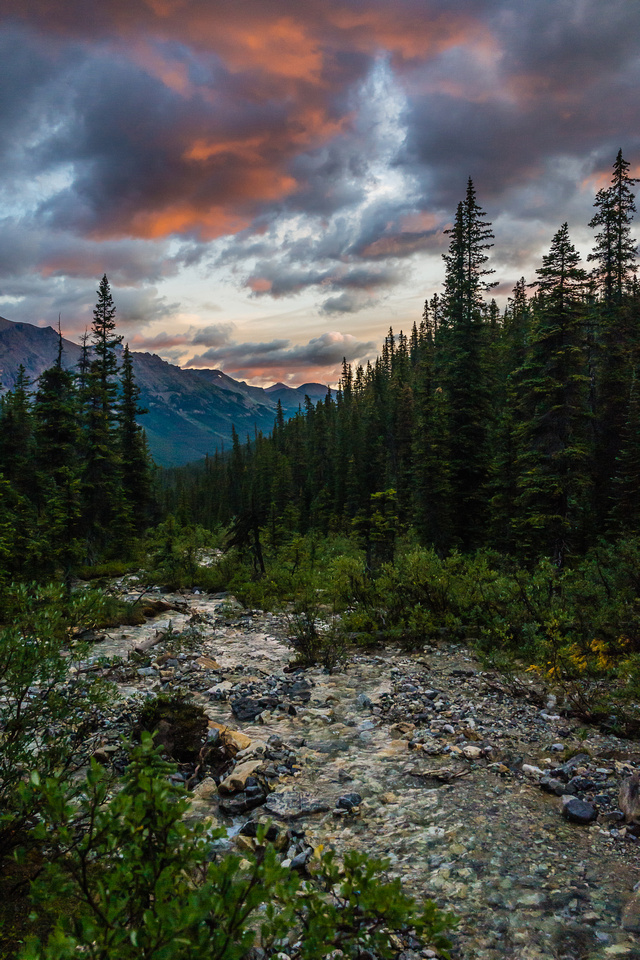 Sunrise along Dolomite Creek as we continue our hike out the following day.