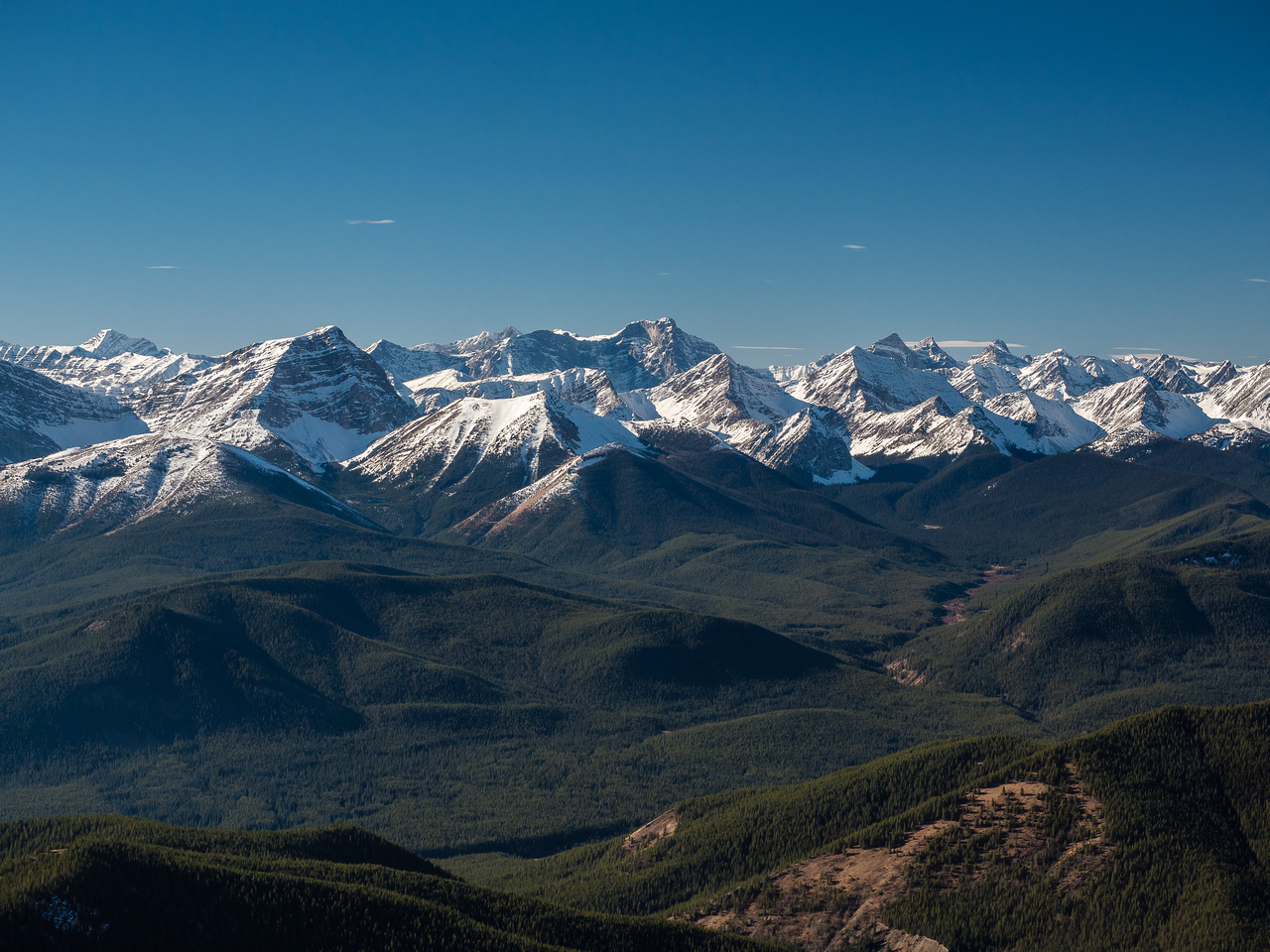 Mount Bishop at left with Abruzzi at center distance and Mount Loomis at front center-right.