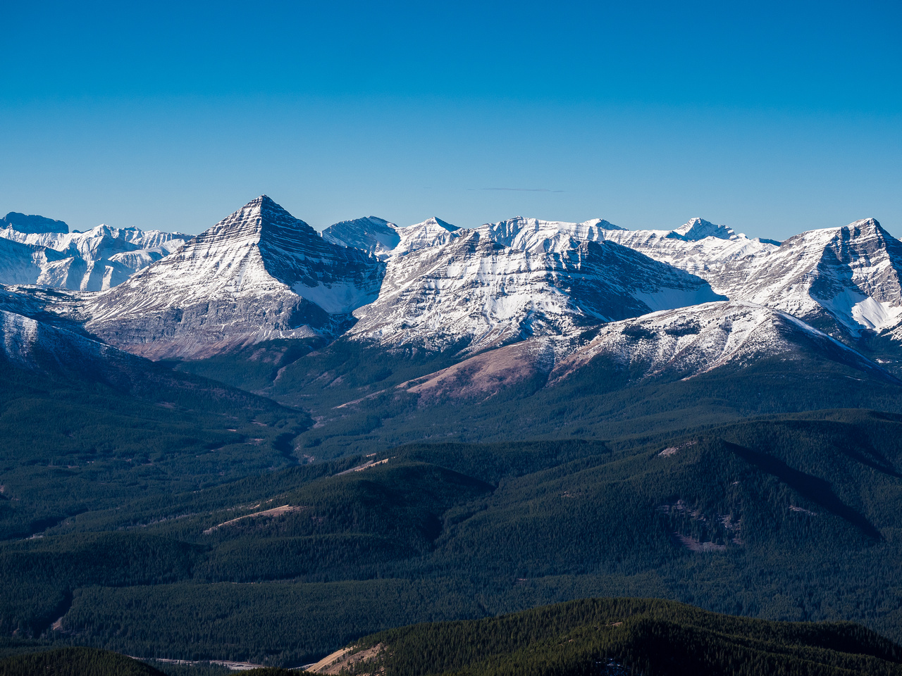 Mount McPhail at left with Horned and Bishop mountains to its right. Hill of the Flowers in the foreground.