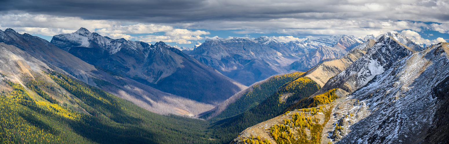 The Monarch (L), Simpson Ridge, Nestor, Indian and Mount Shanks over the Verdant Creek valley.