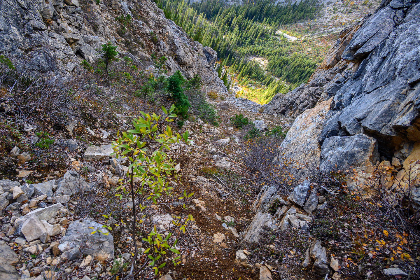 Descending the steep NW access gully to Hawk Creek.
