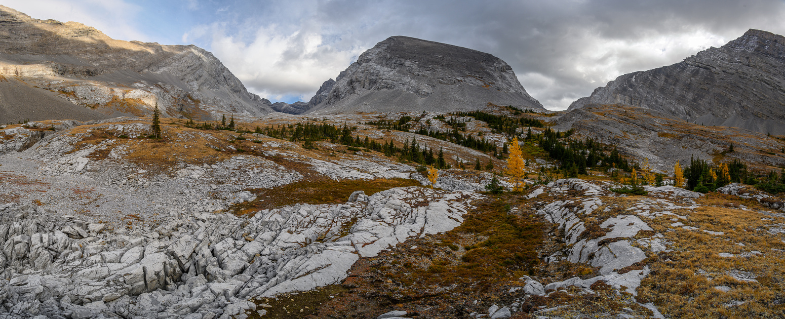 Entering the expansive alpine meadows under James Walker (C) and Inflexible. Headwall Peak at left.