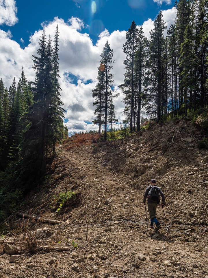 There are many ways down and up McGillivray Ridge - logging roads will get you a good ways along but eventually you'll either be on game trails, dirt bike trails or your own track through light bush.