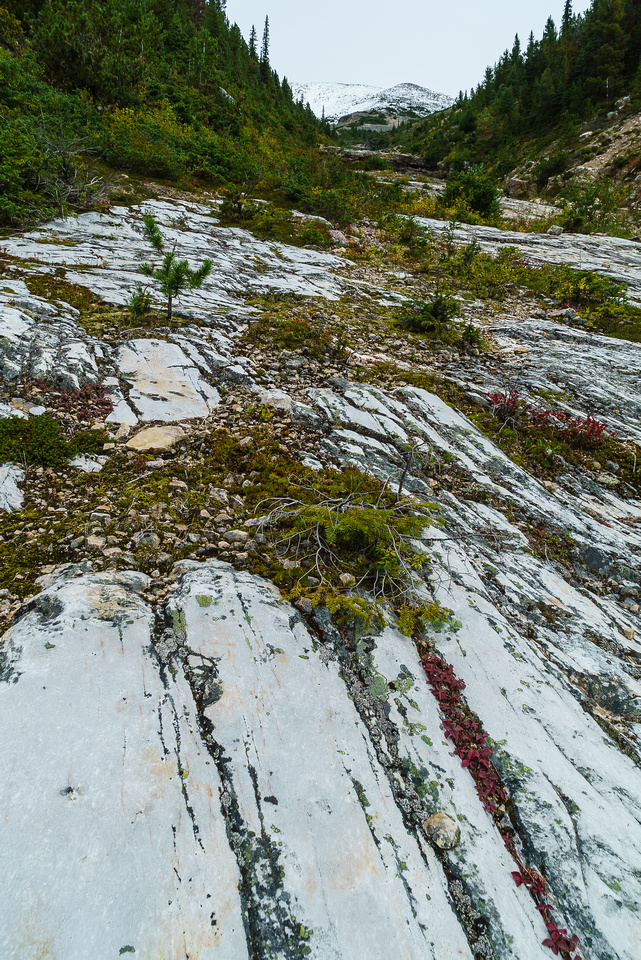 I wondered if the slabs in the gully would be an issue but we could avoid slick parts on climber's left.
