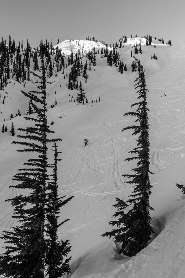 Steep, choppy skiing near the tree triangle.