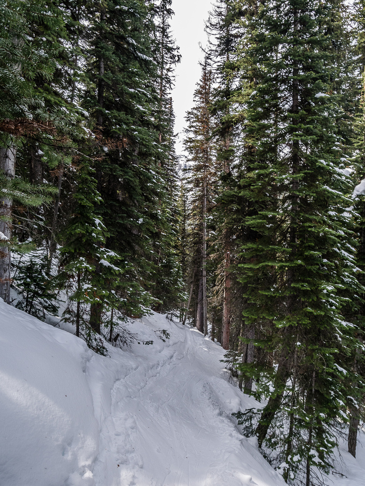 """Descending from Lake Annette on the narrow track was """"interesting""""."""