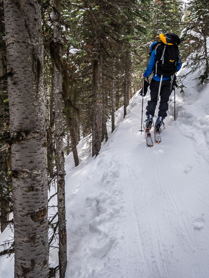 The trail is trickier to ski near the lake since all the loose snow has been skied off the day before by descending skiers.