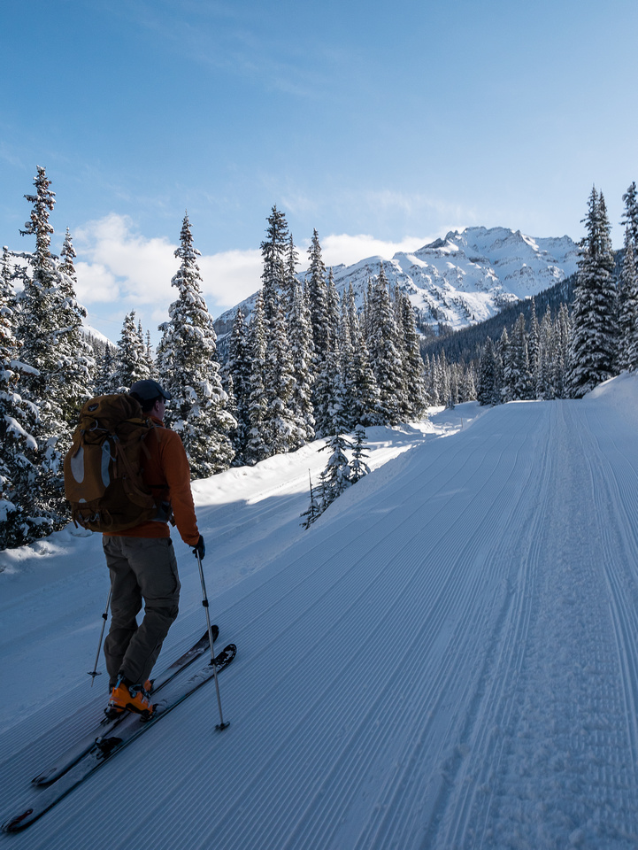 Skinning up the Lake Louise Ski-out road.