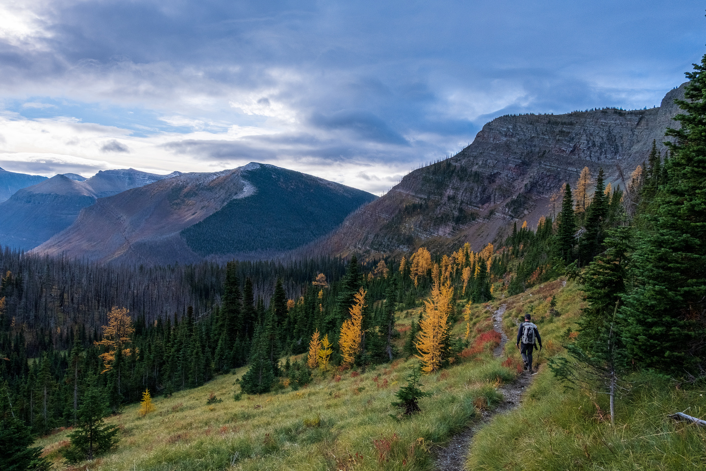 Hiking the Tamarack Trail / GDT between Twin Lakes and Lone Lake.