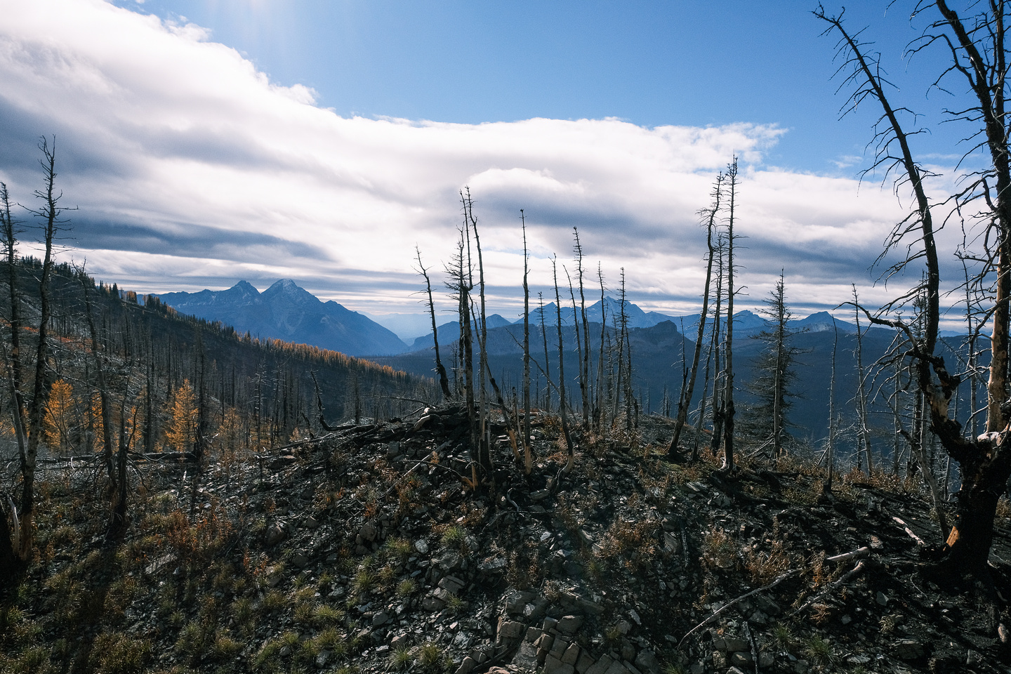 The Kenow wildfire.