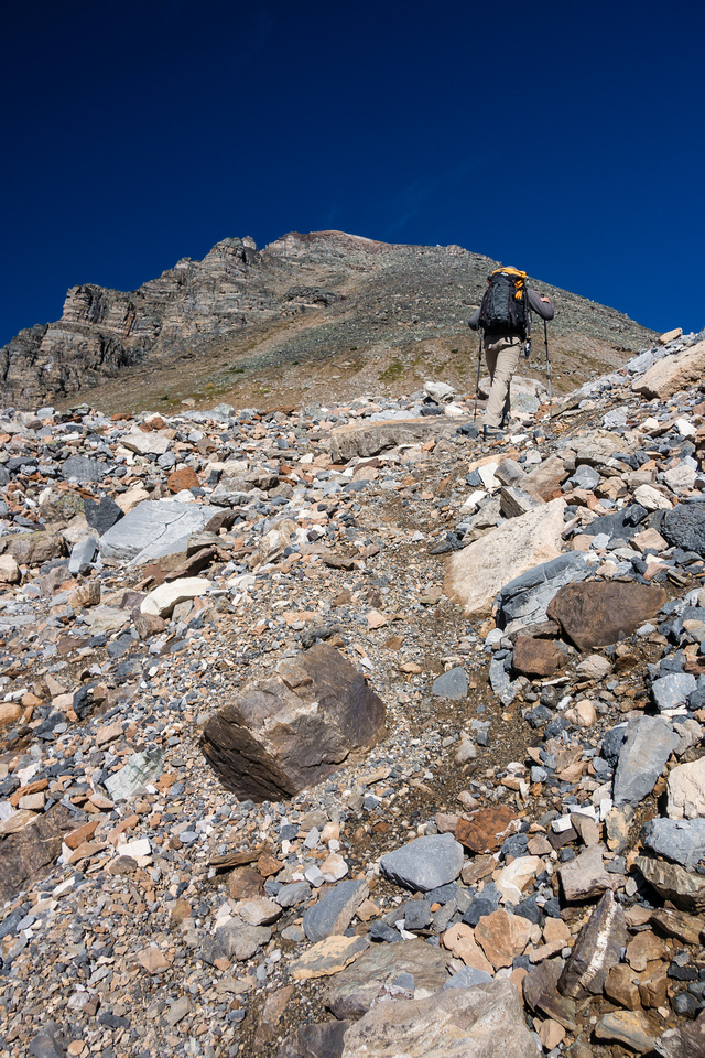 In the scree gully leading to the upper mountain.