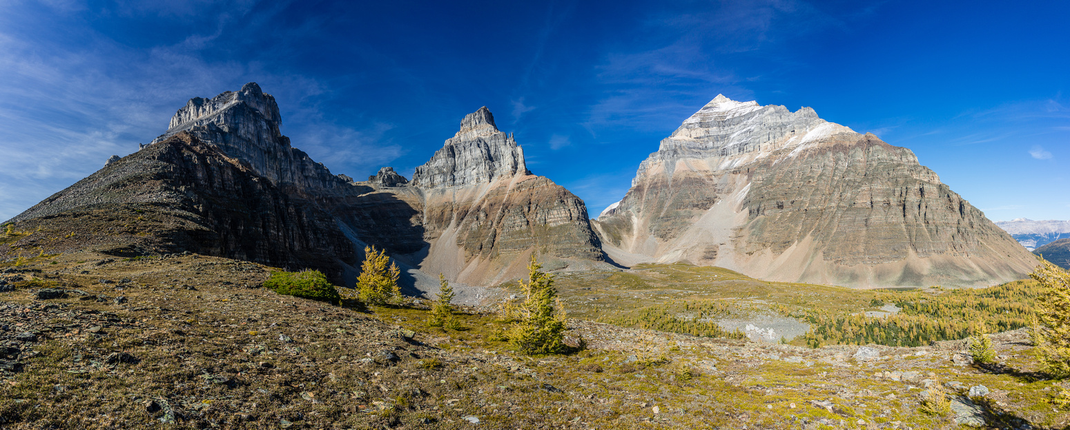 Great views of Larch Valley with Eiffel, Pinnacle (L) and Mount Temple (R) looming above.