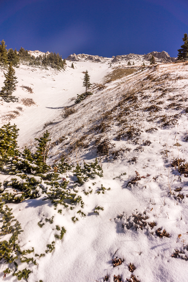The snow gully I ascended from McDougall Pond.