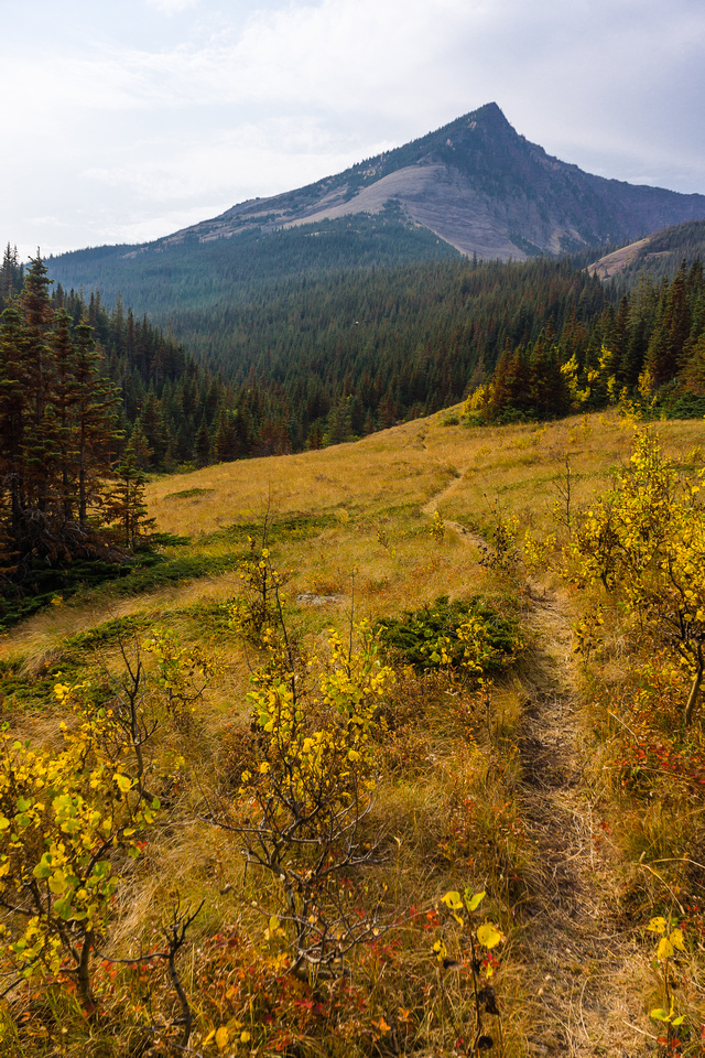 The trail continues to make excellent use of open areas, where possible.