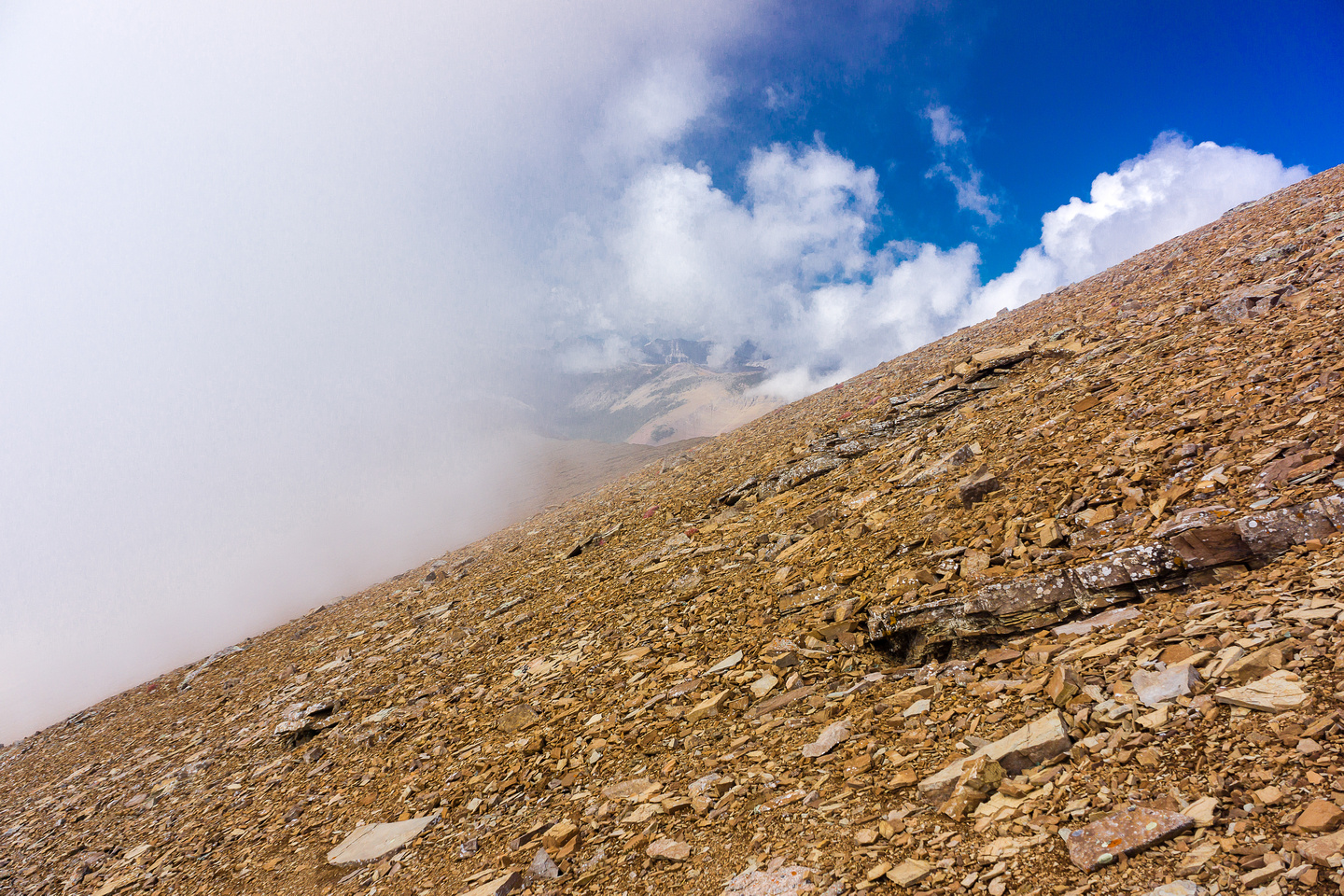 Finally I'm on the summit scree slopes - summit to the right here.