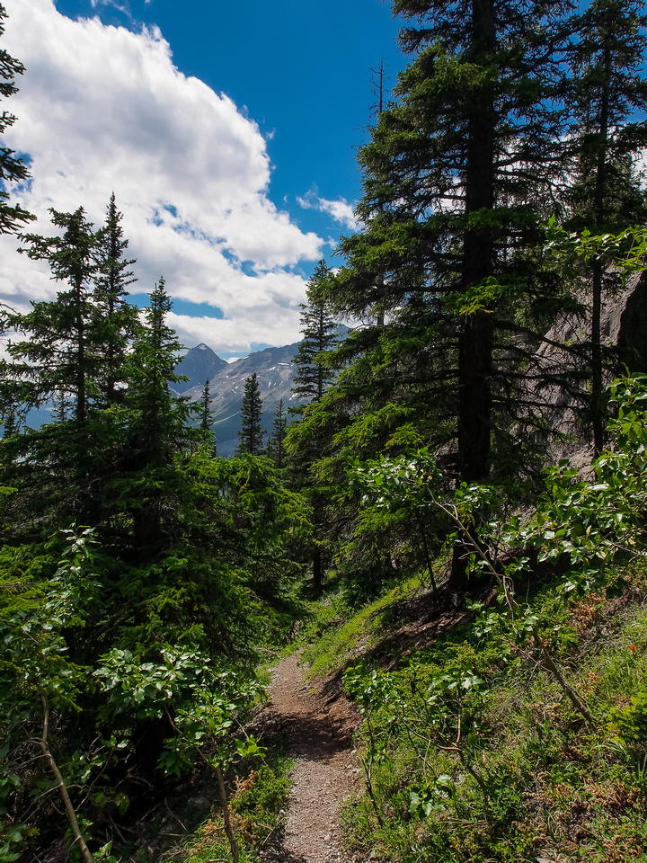 The trail to West Wind Pass