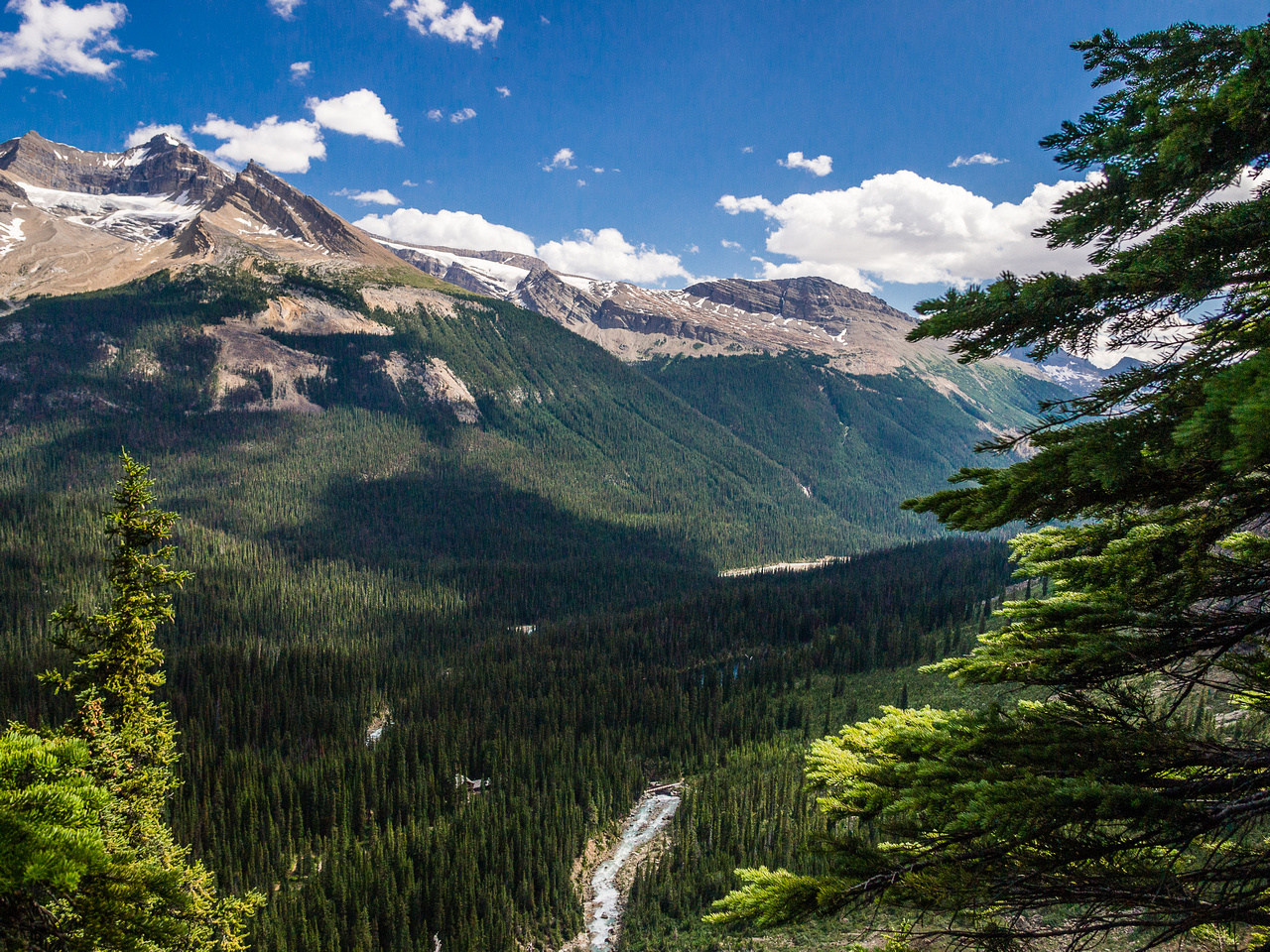 Looking down Twin Falls and the Yoho Valley.