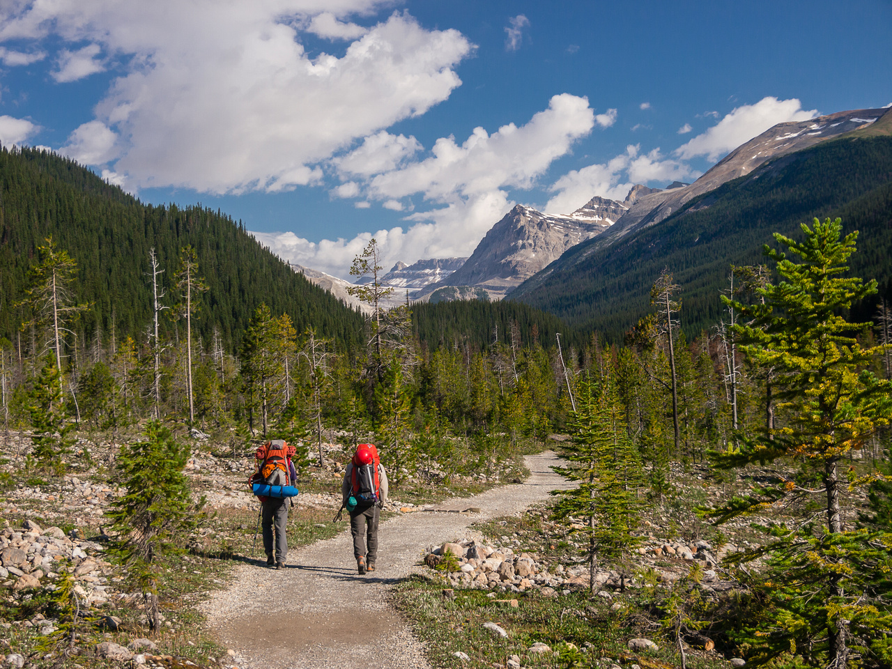 We start off down the well maintained Yoho Valley trail in perfect weather.