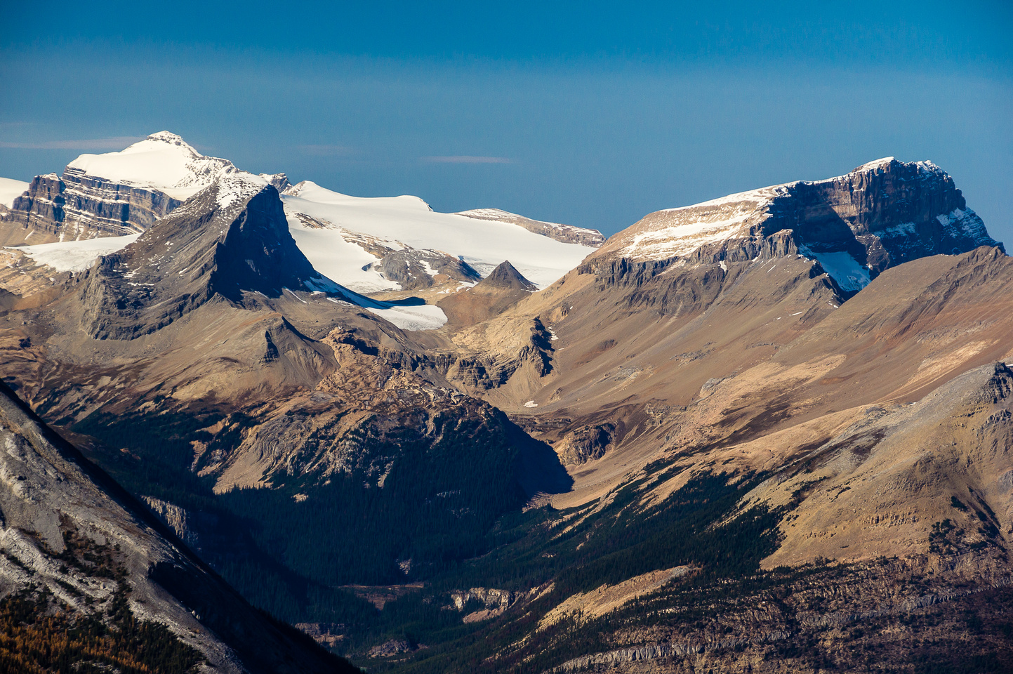Niles Meadows approach (winter) to the Wapta Icefields with Niles at left and Daly at right. Balfour at distant left.
