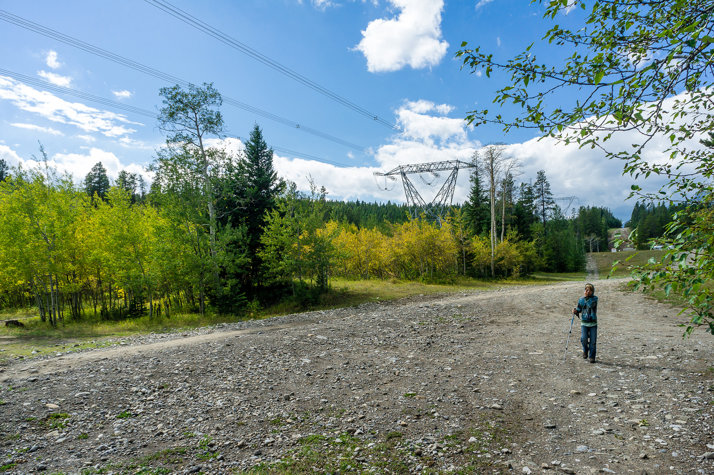 After parking on the south end of the open camping area, simply walk down the logging road heading east.