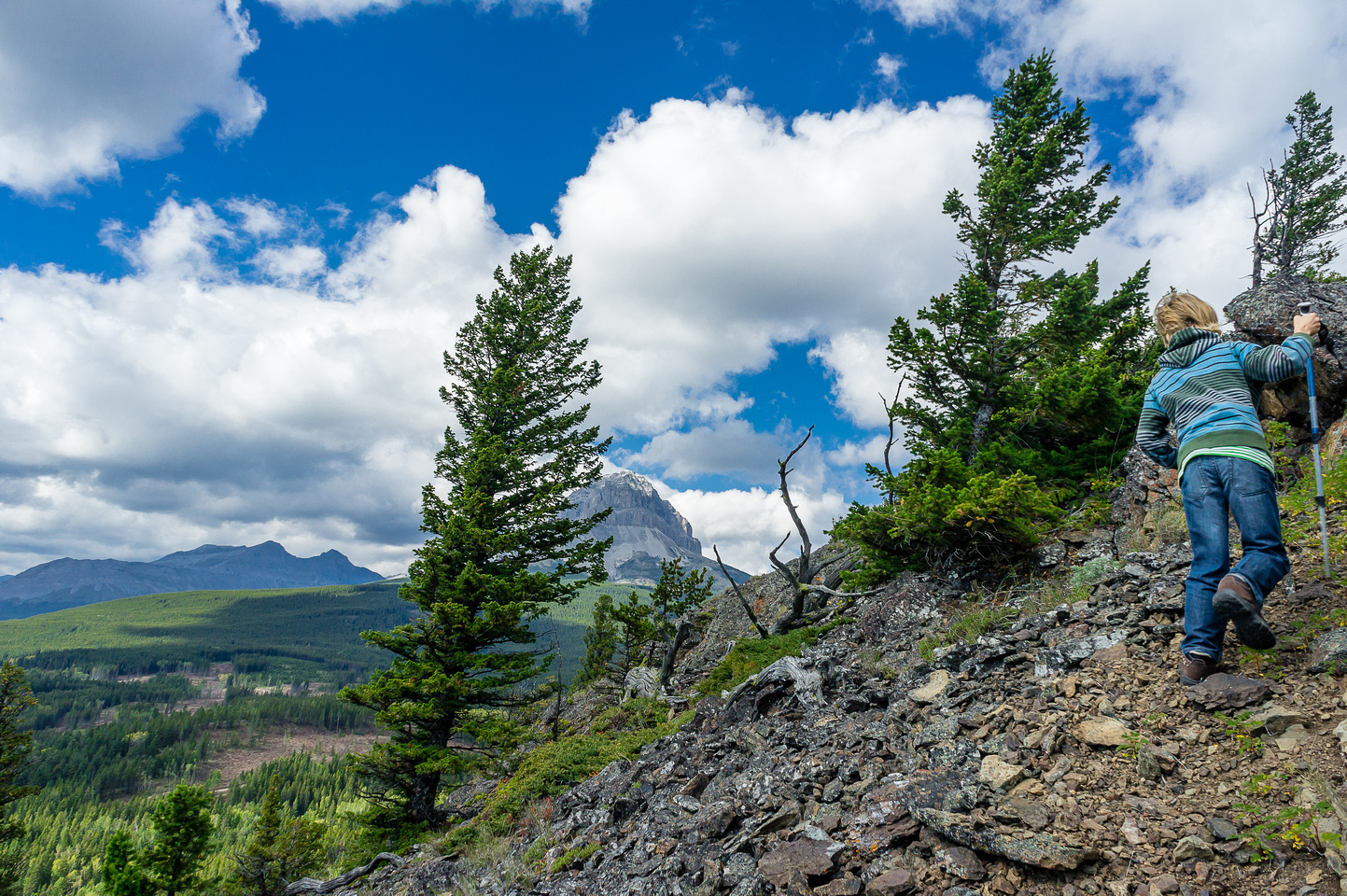 The main reason to do this scramble is for the views of Crowsnest Mountain.