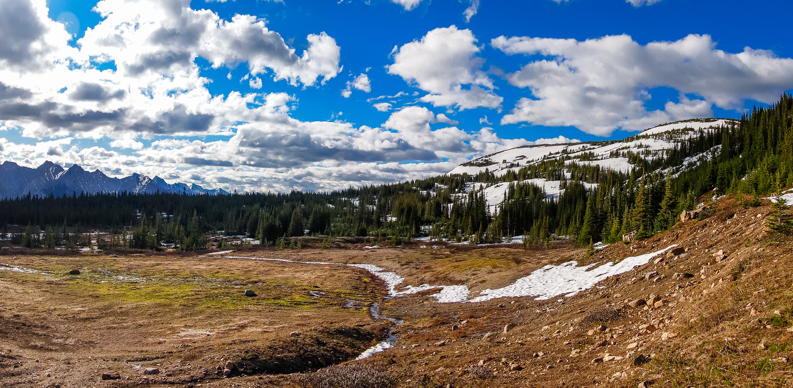 The gorgeous alpine meadows at the end of the bike ride - Pyramid Mountain is to the right, out of the frame.