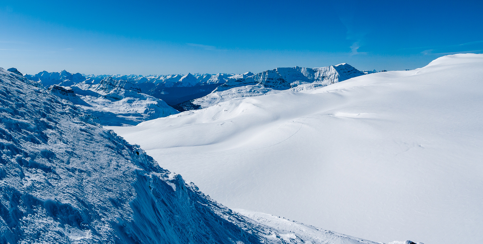 Looking west over the Waputik Icefield towards The Presidents.