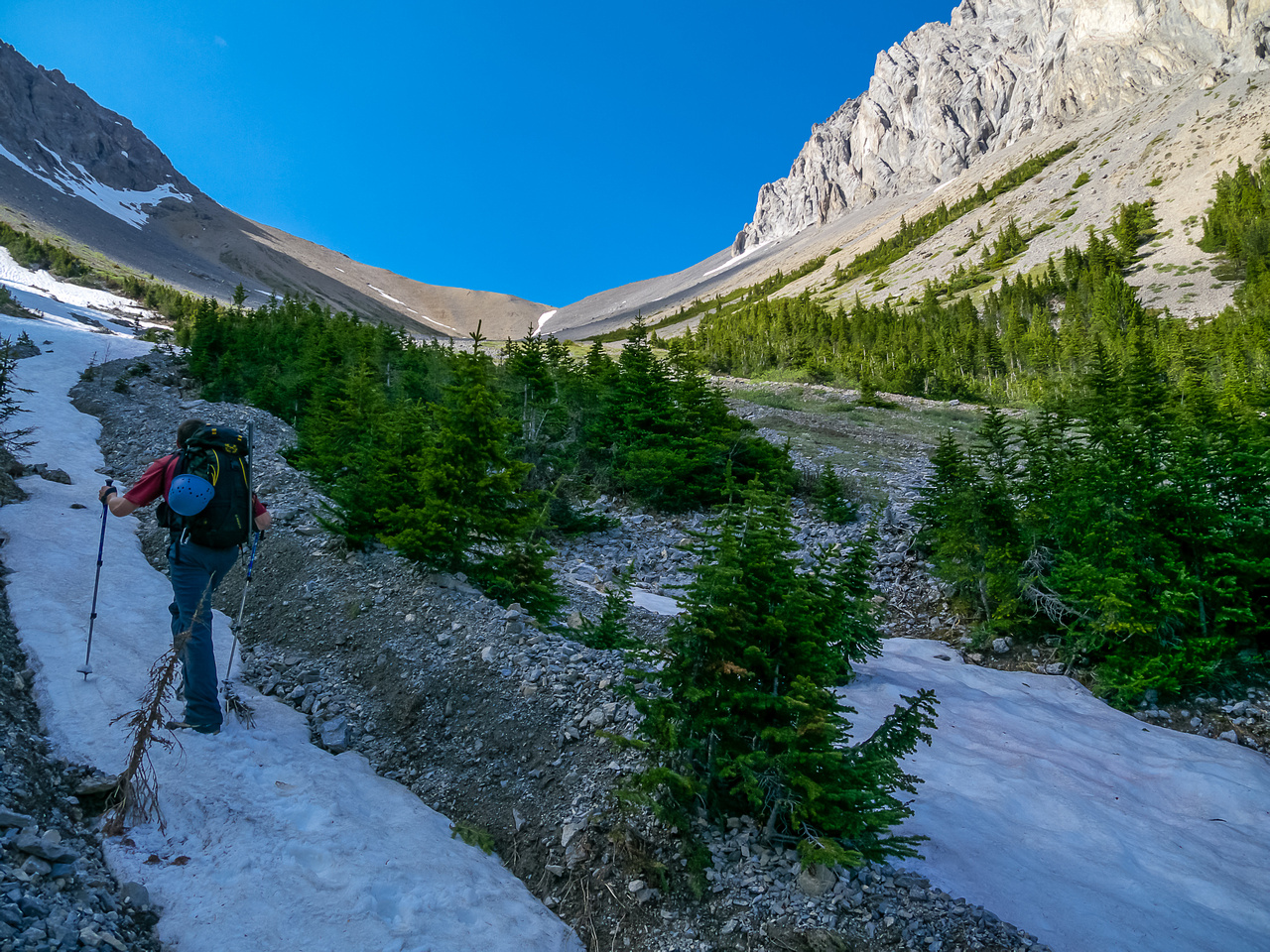 Approaching tree line as we head for the Pig's Tail / Commonwealth col.
