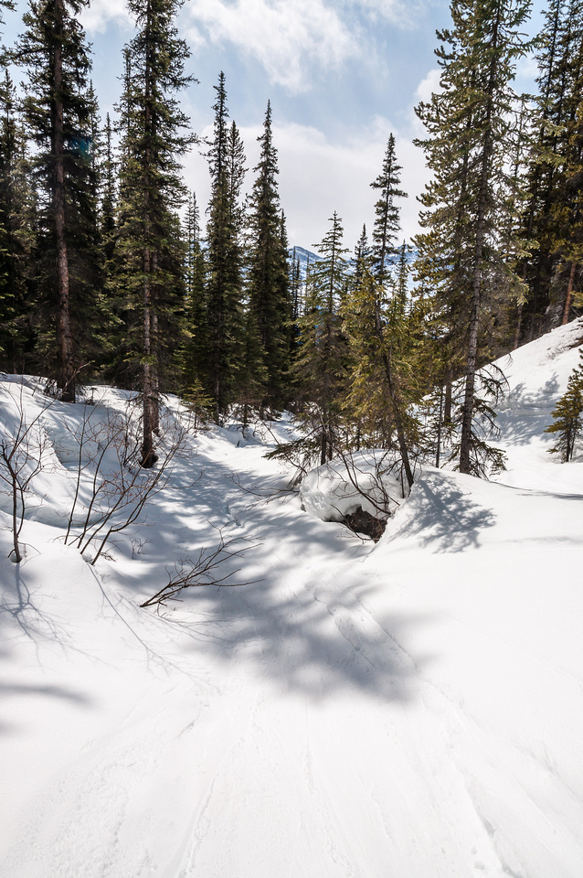 The ski back down Hector Creek is always entertaining - especially with isothermal snow!