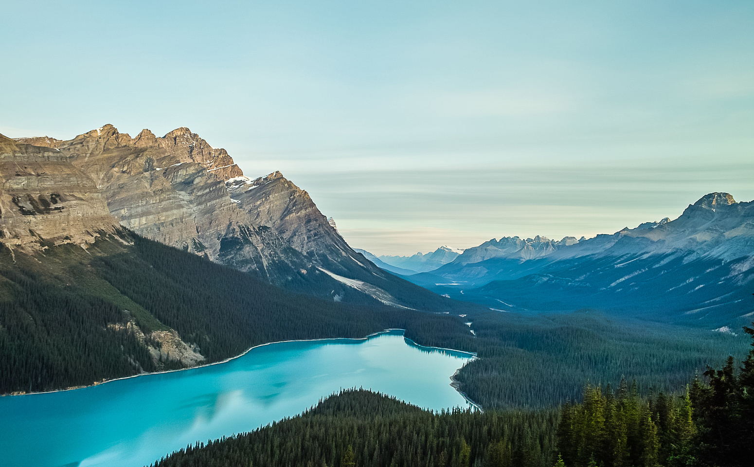 Gorgeous Peyto Lake in early morning lighting.
