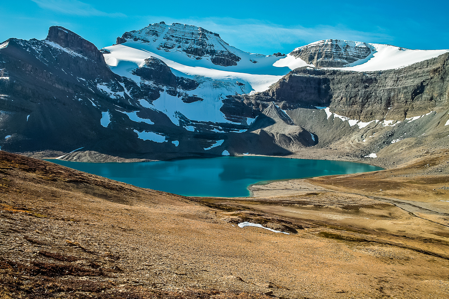 Stunning view of Caldron Lake with Peyto Peak rising above it.