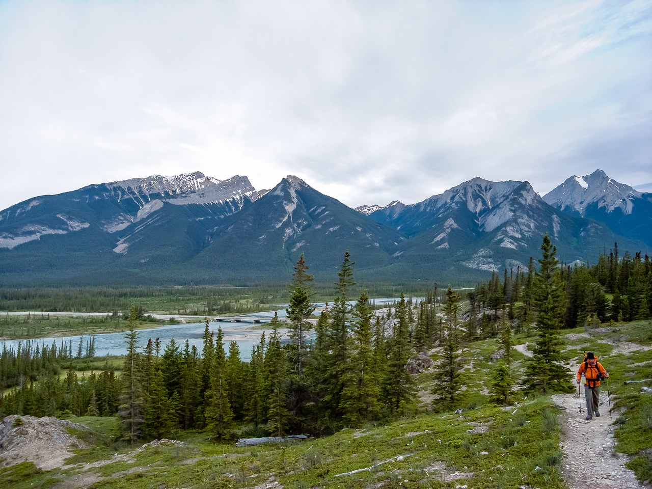 Looking back at Wietse on the very well traveled Overlander Trail with the Athabasca River at left.