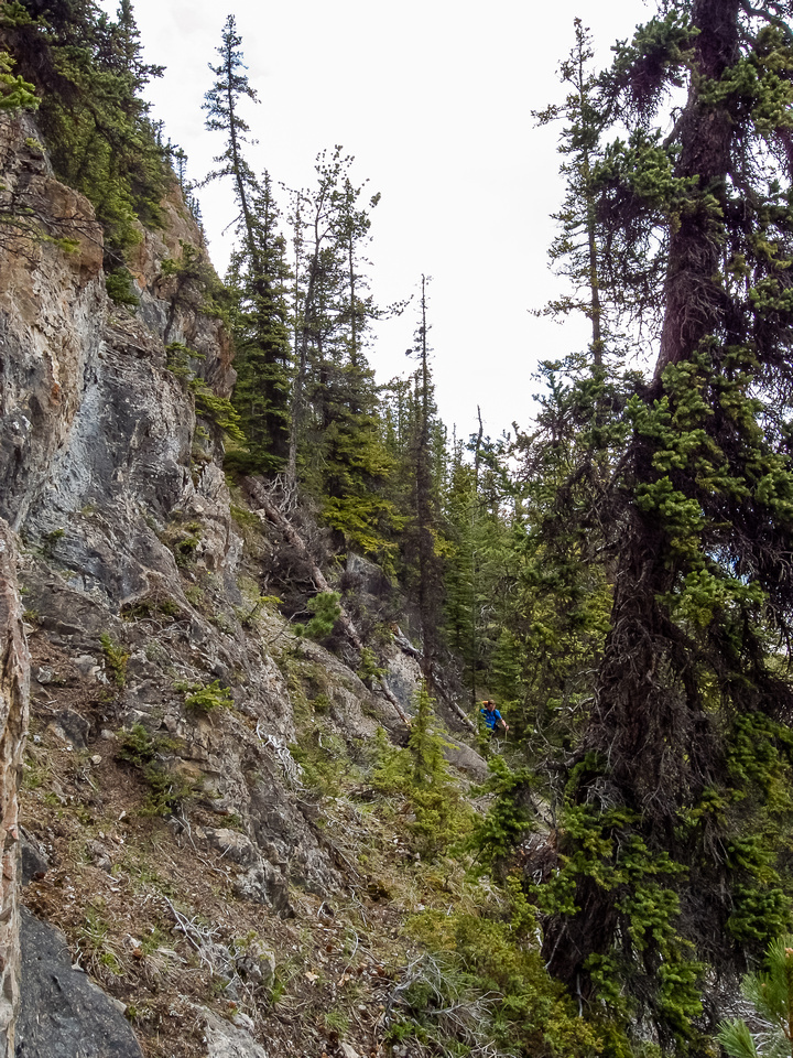 We ascended steep cliffs through the trees on the southeast slopes of Morro Peak to reach the summit.