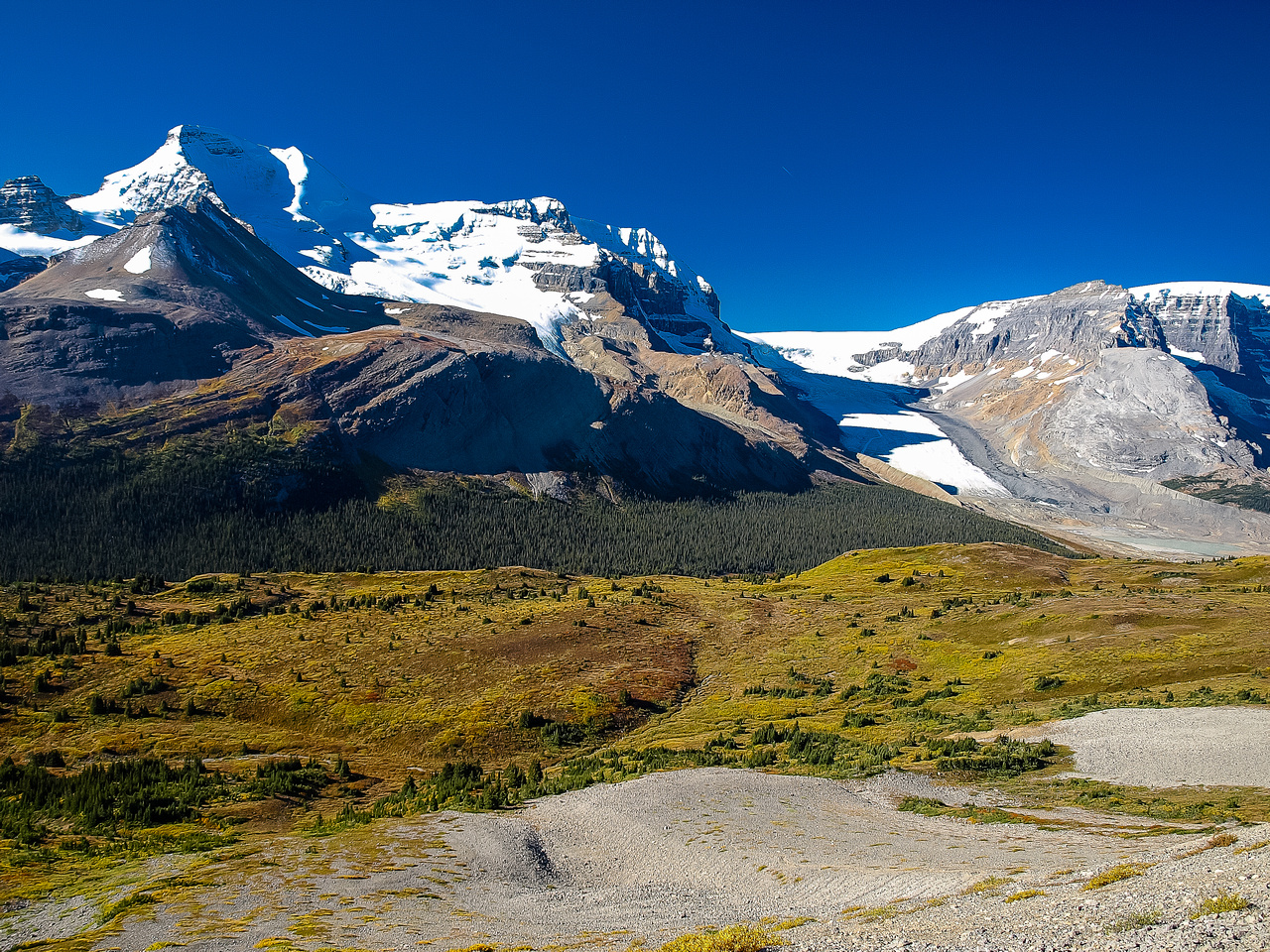 Looking back across Wilcox Pass towards Athabasca (L) and Snow Dome (R) with the Athabasca Glacier in between.