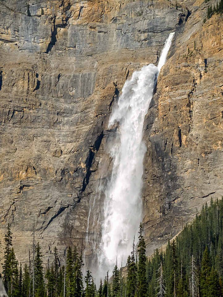 Takkakkaw Falls looks much bigger now that we're closer to it.