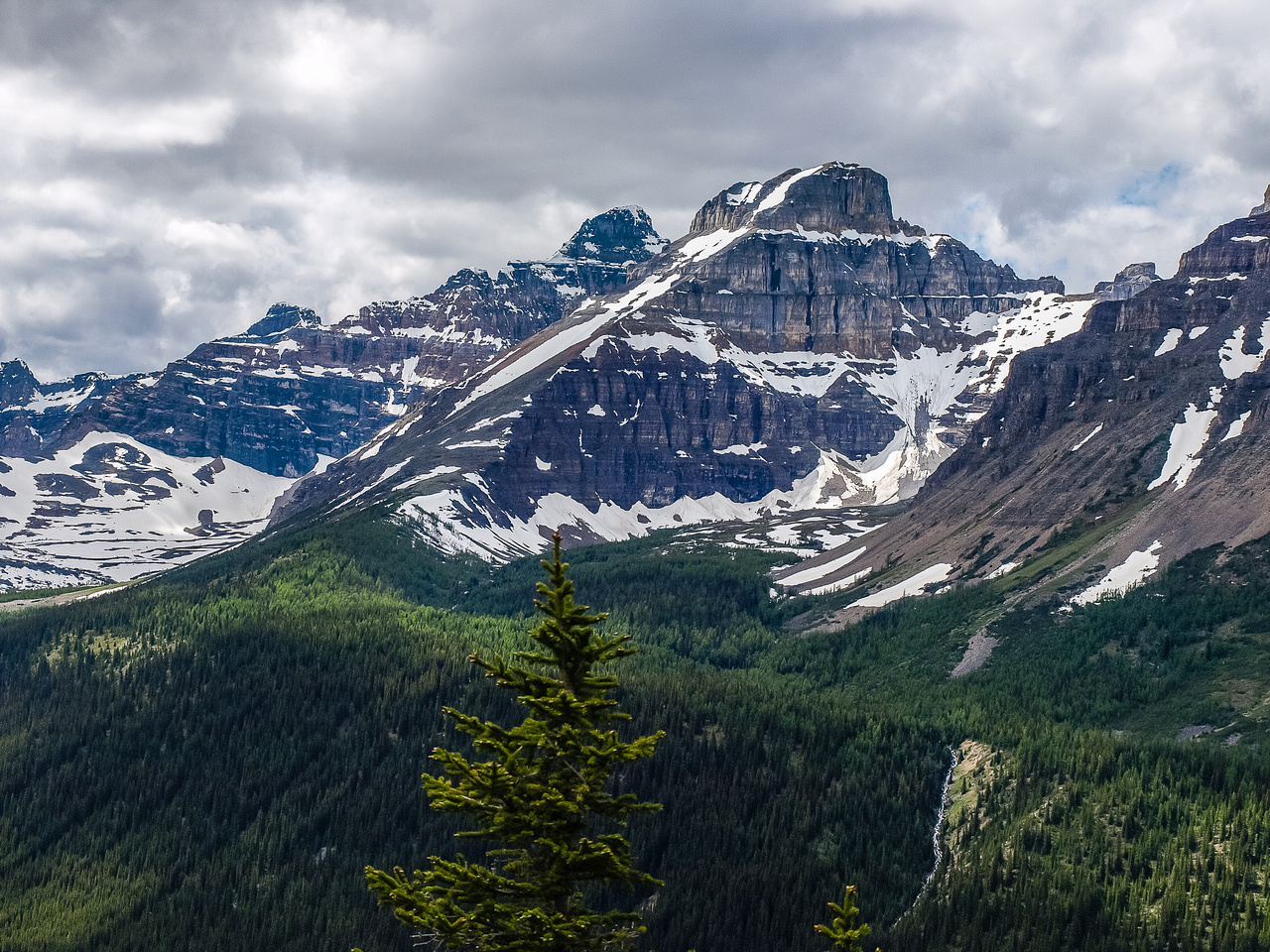 Gorgeous view over Larch Valley towards Hungabee and Eiffel with Sentinel Pass to the right.