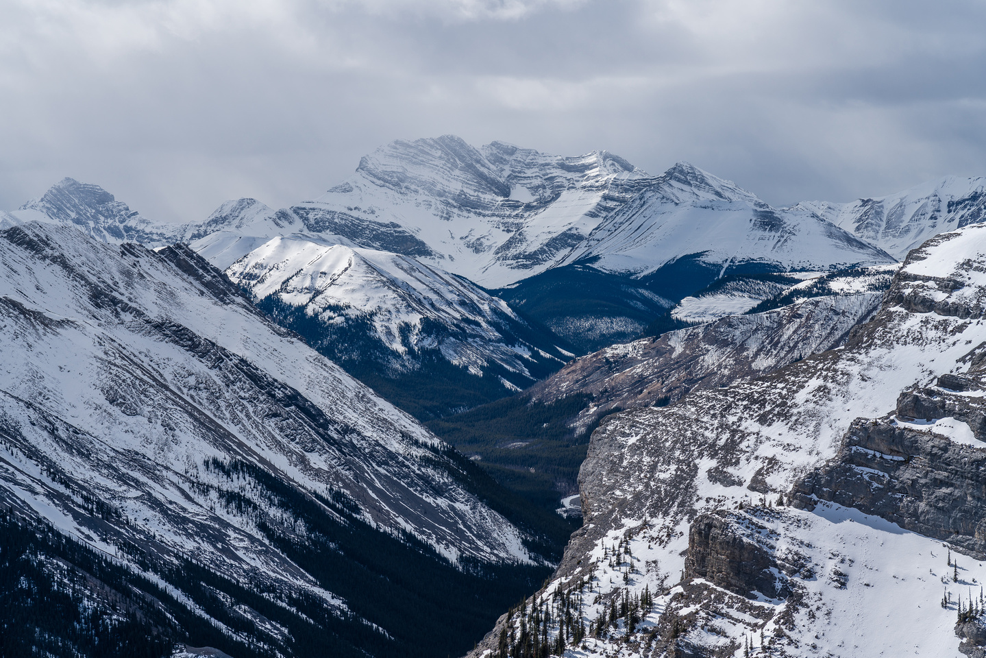 Puma Mountain is over 10,200 feet high and at the north end of the Palliser Range.