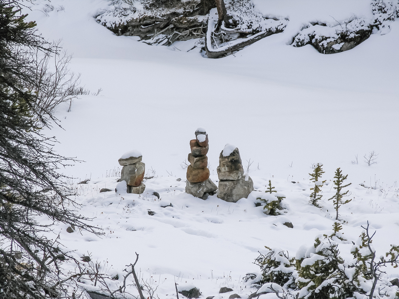 These cairns mark the spot to leave the Wilcox Pass trail and cross Tangle Creek to the ridge.
