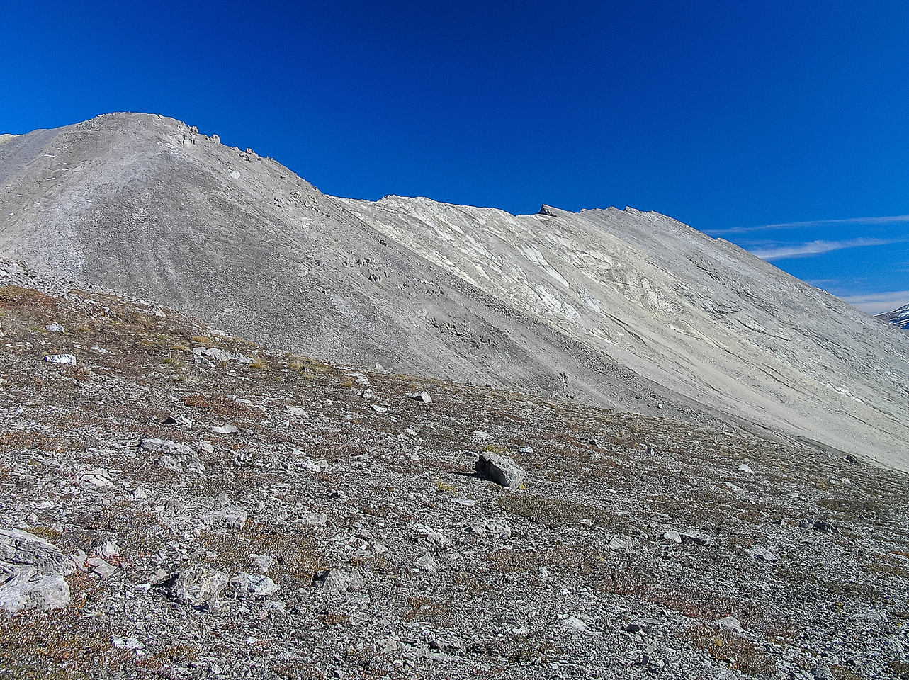 Looking back at Anthozoan's west slope as we start up Brachiopod's south summit