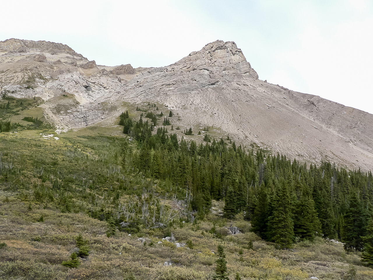 View up the SW aspect of Skoki Mountain.
