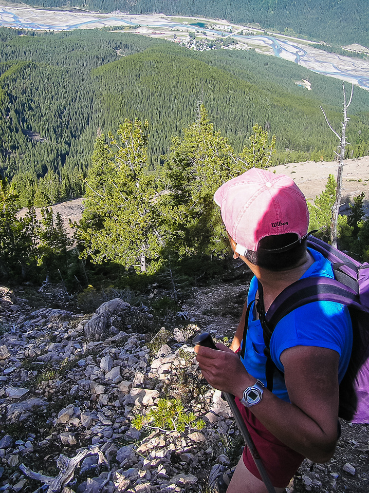The initial grind to tree line is quick and bloody steep.