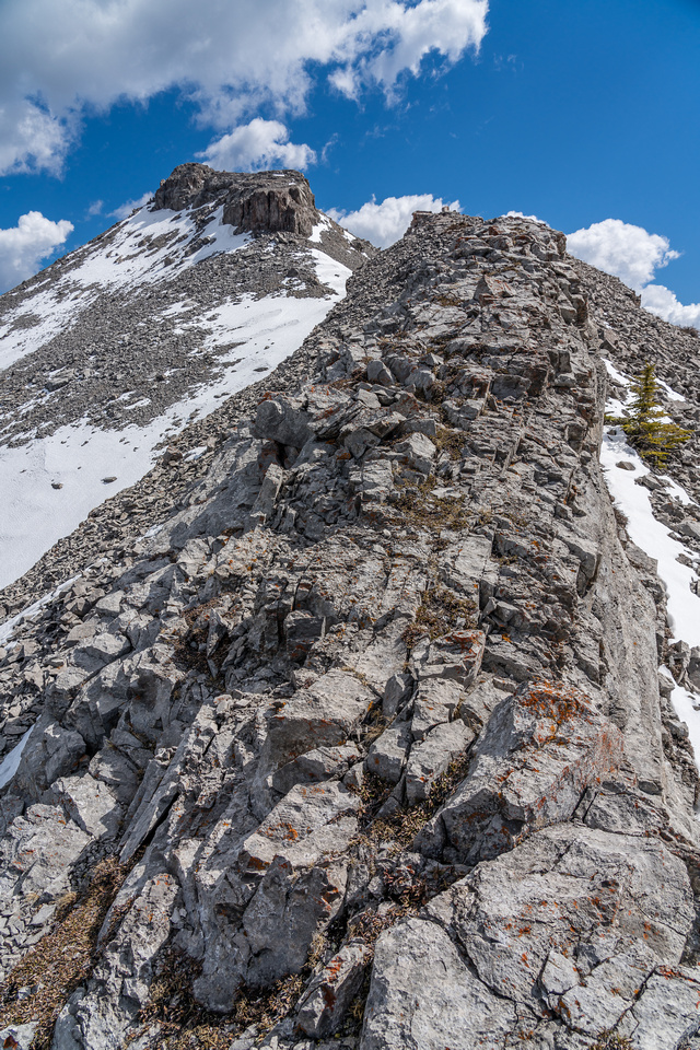 Looking up the SW ridge to the summit of North Burke.