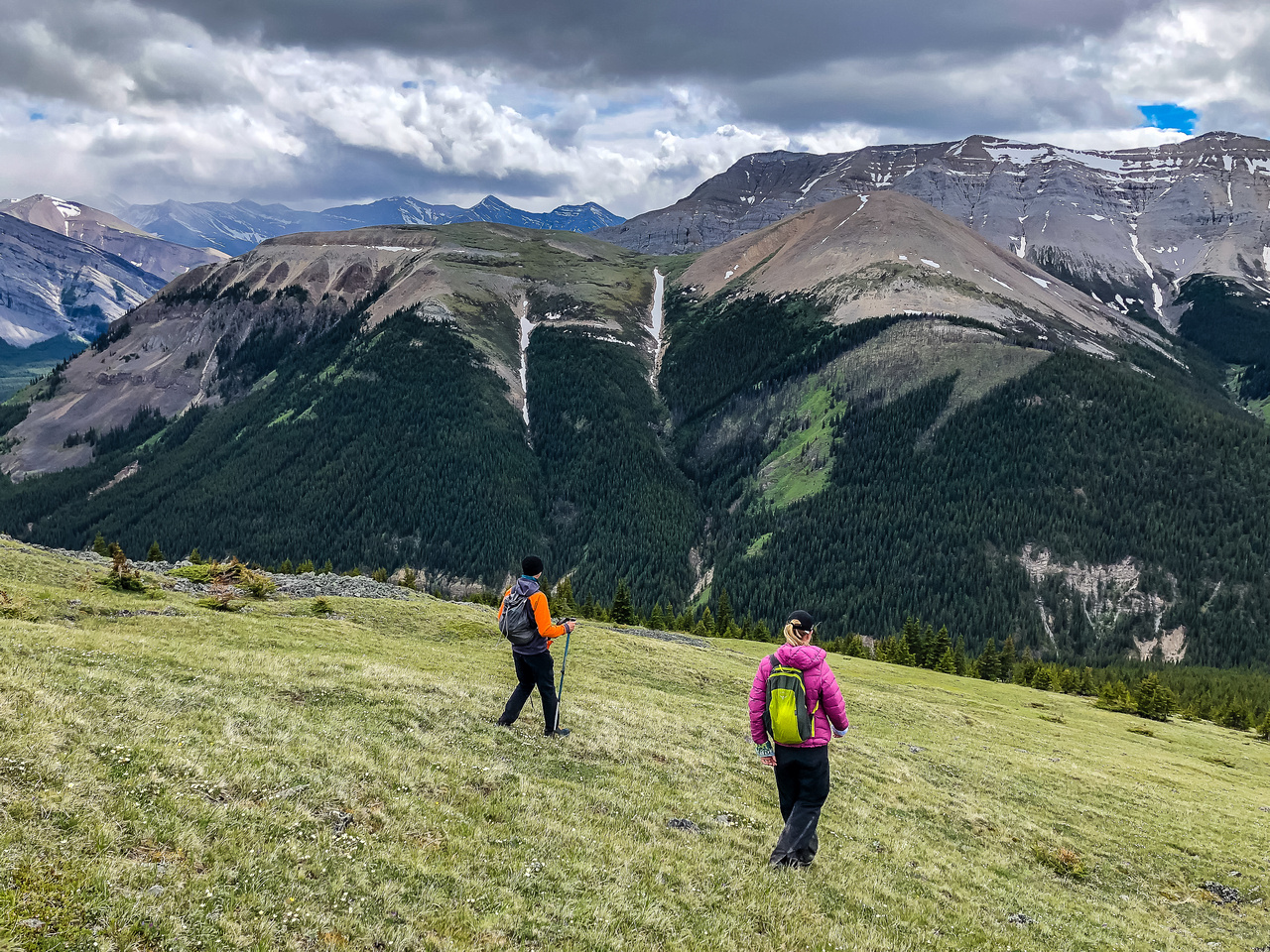Descending the west slopes of Wapiti towards Tyrrell Creek.