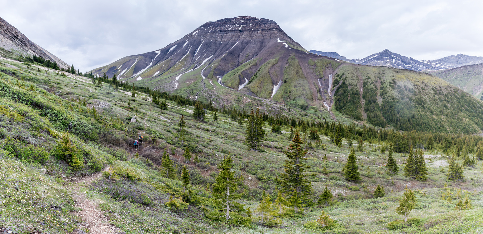 Descending Shale Pass towards Peters Creek and Chirp Peak with Divide Pass at left.