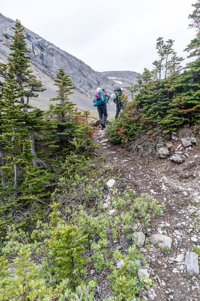 Hiking up to Shale Pass.