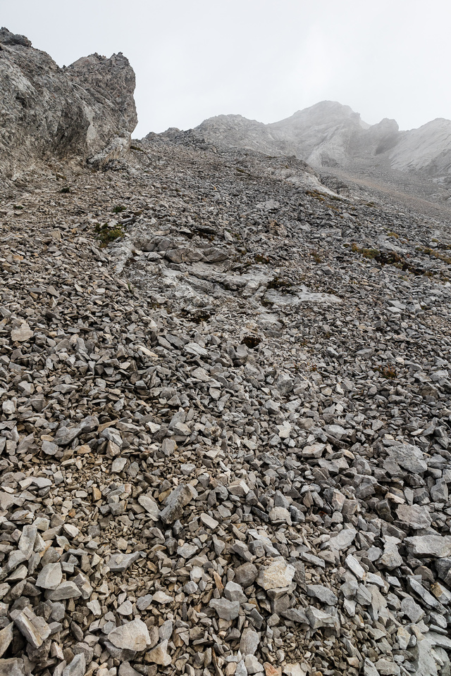 Ascending the south ridge - sometimes it made sense to get off the ridge and ascend scree trails.