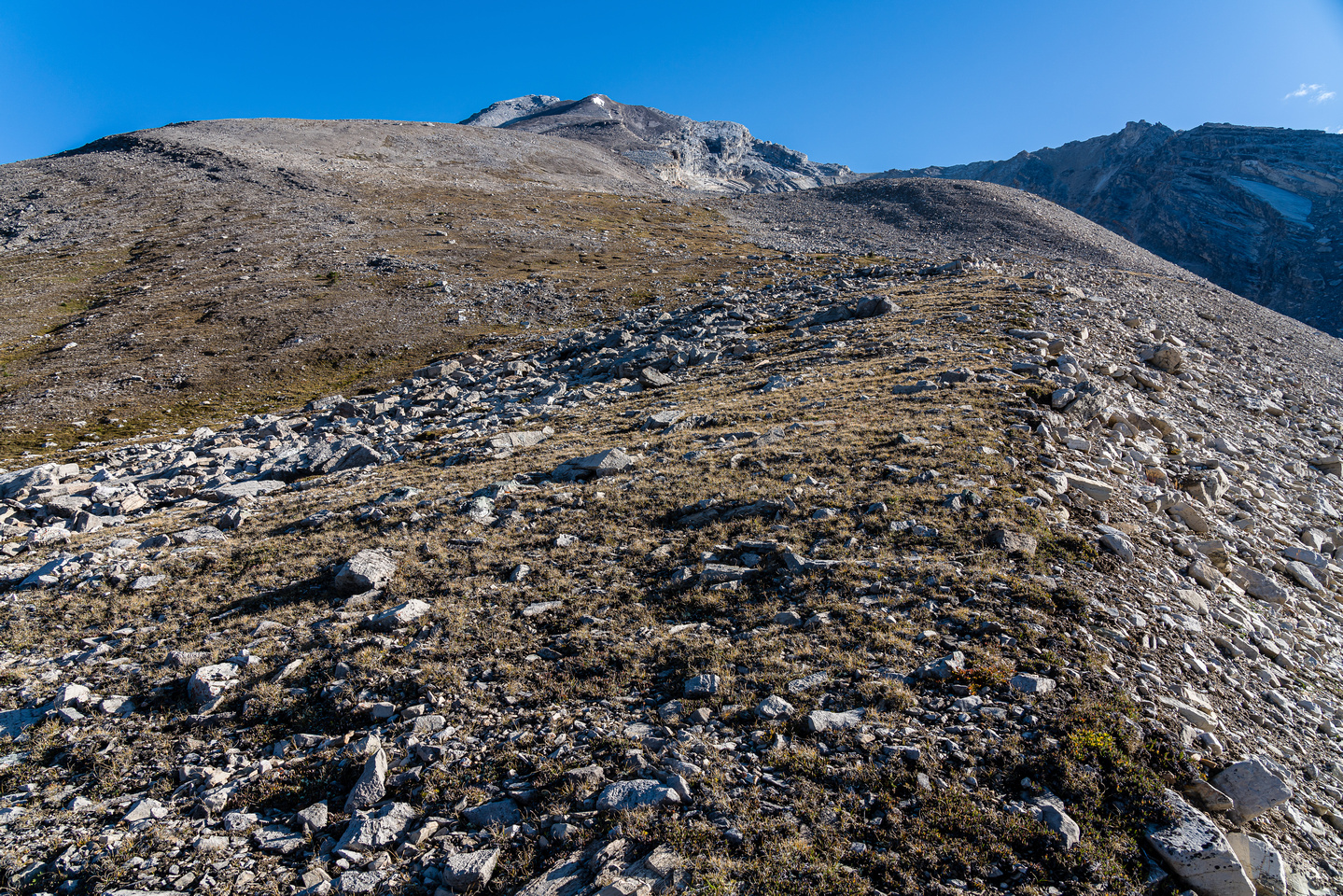Ascending the lower SW ridge of Clearwater Mountain. This mountain is huge!