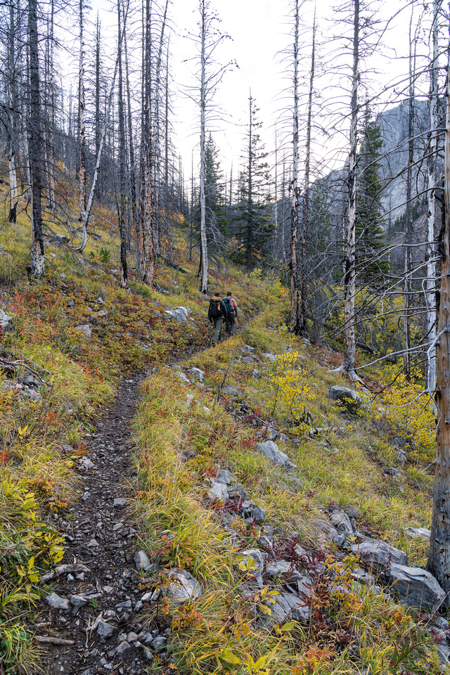 The Buller Pass trail is in good fall conditions.