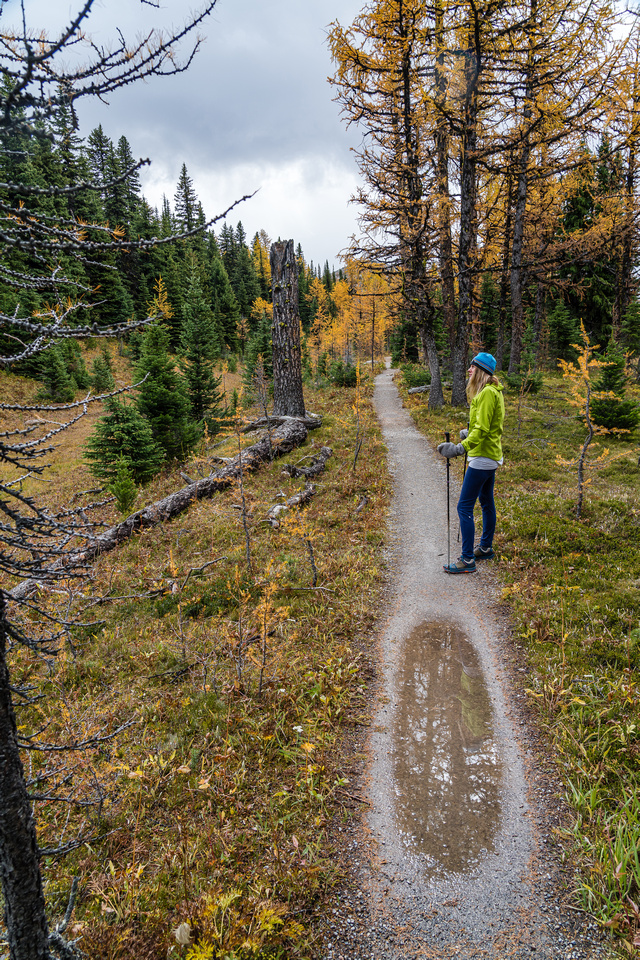 Hiking between Grizzly Lake and Larix Lake.