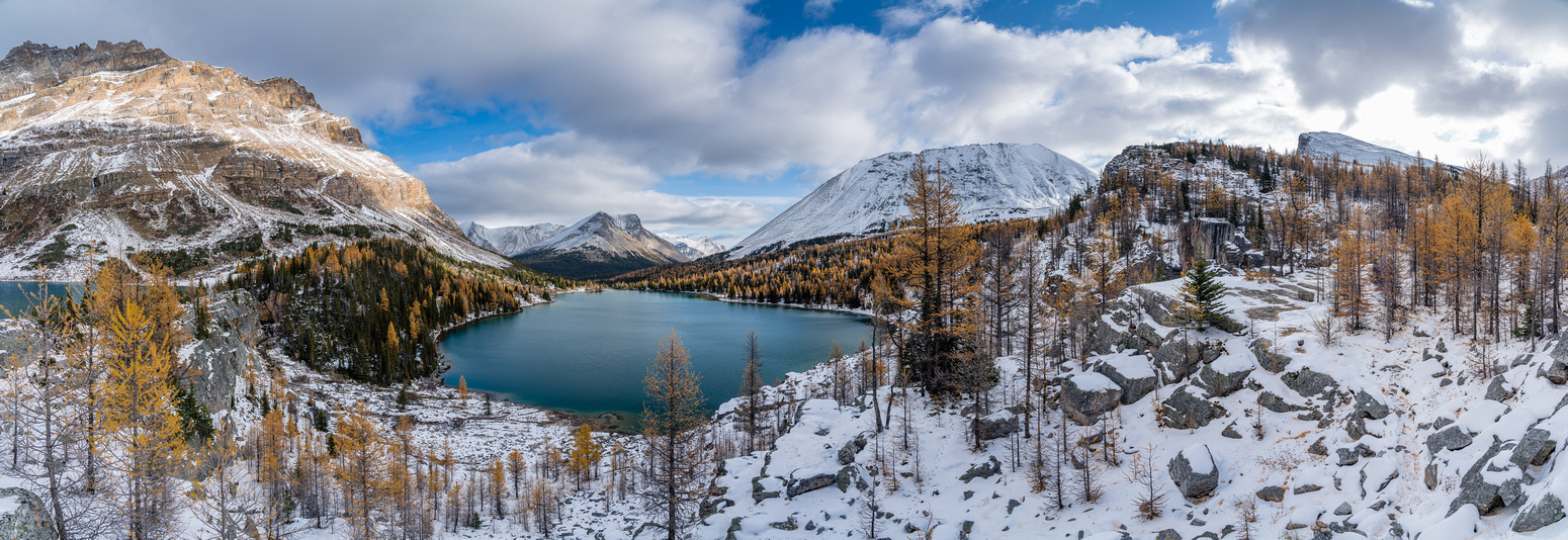 Larches and snow along with a sparkling Myosotis Lake.